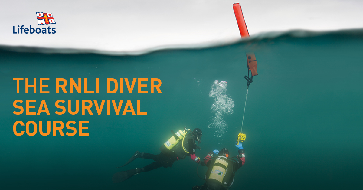 The Rnli Sea Survival Diver Course