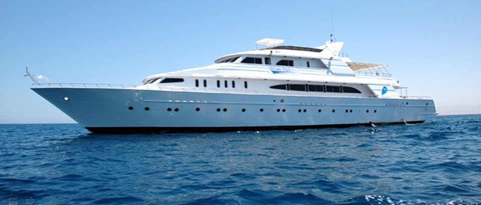 Dive Charter Livaboard Red Sea