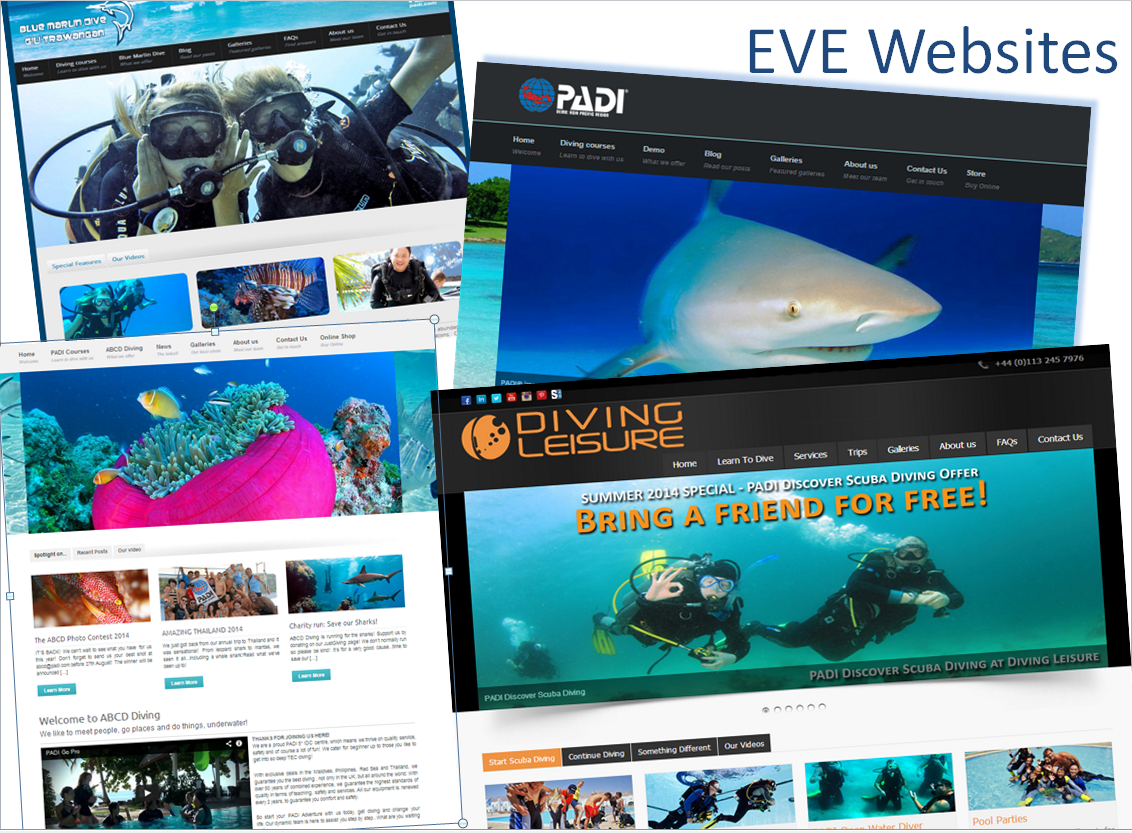 EVE Websites